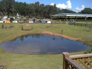 A watering hole to swim the horses